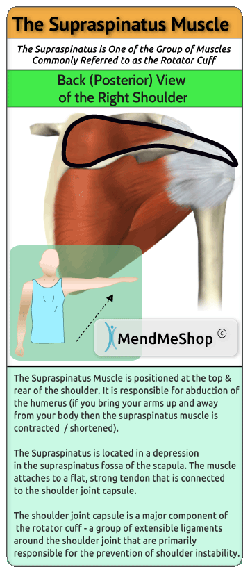 supraspinatus-muscle-injury-pain-swelling